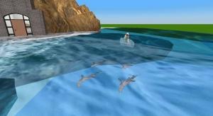 The Shark's Coast poster